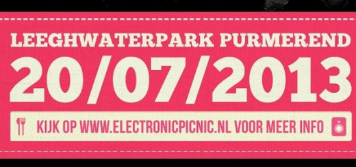 Electronic Picknick 2013